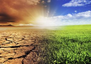 Climate & the environment
